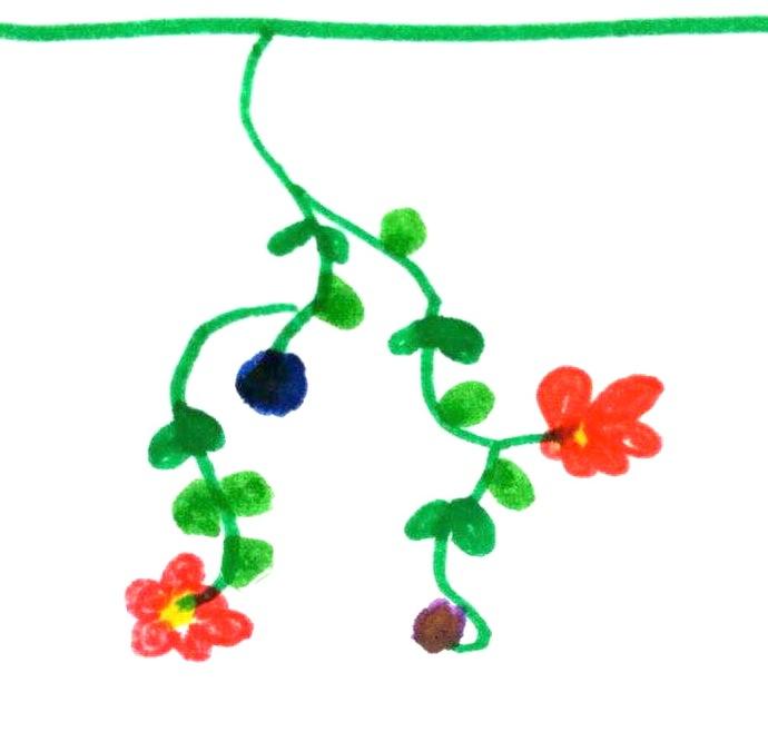 fiori lisa 2
